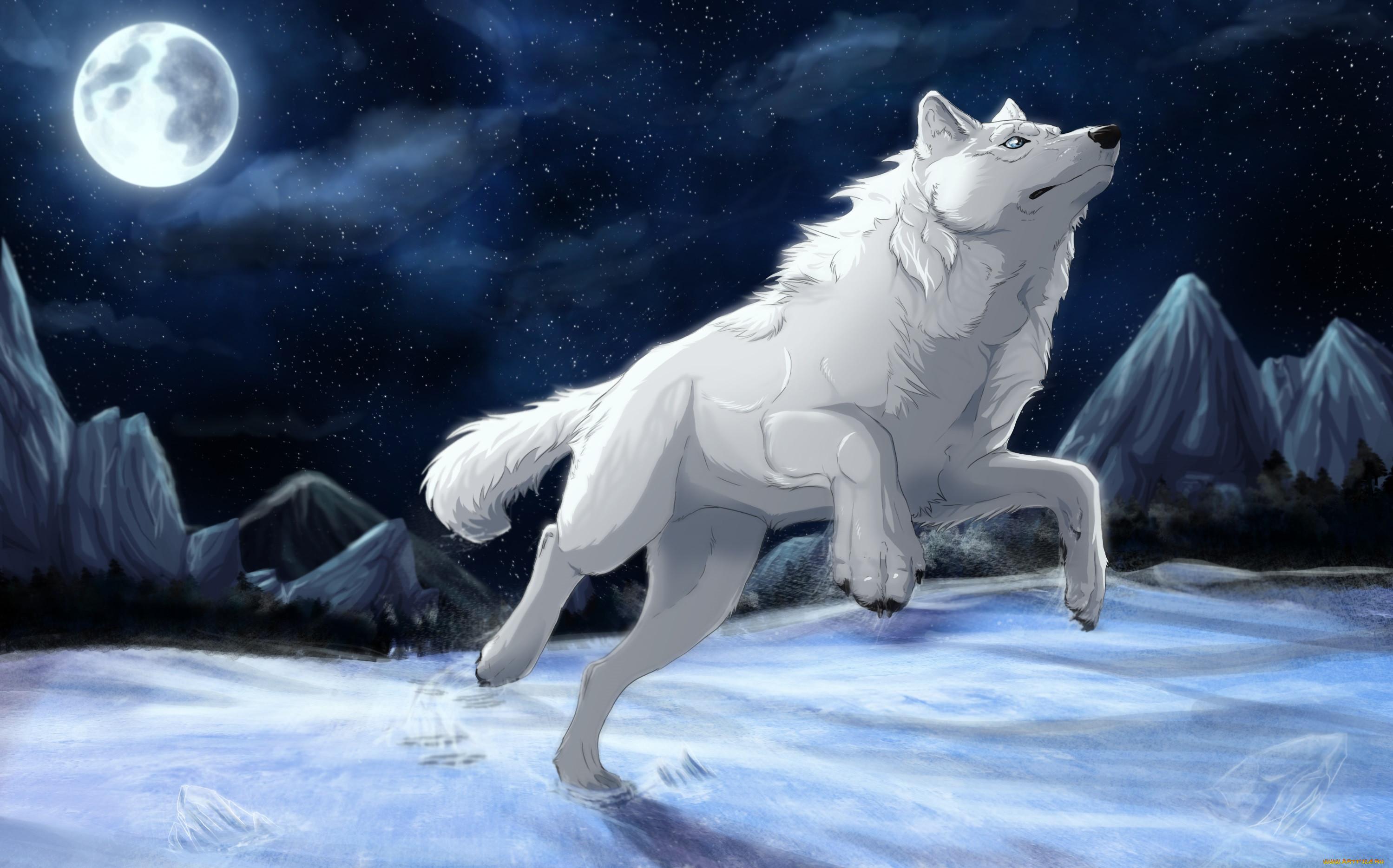 Картинки волков аниме луна